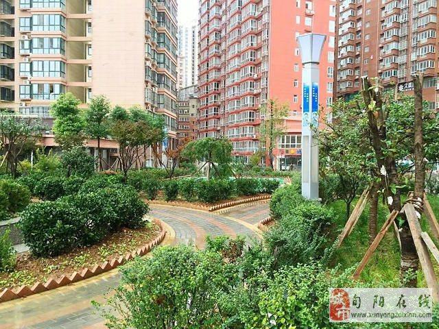 丽都家园临江2幢2-1103毛坯房(卫生室楼上)149㎡、四室两厅两卫双阳台出售!