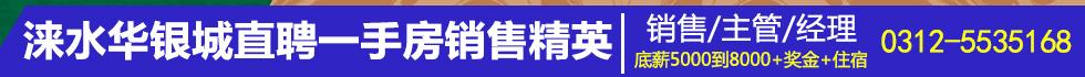 河北华银房地产开发有限公司