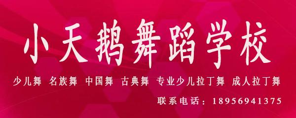 桐城小天鹅舞蹈学校