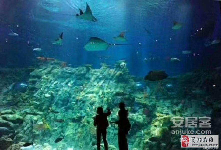 壁纸 海底 海底世界 海洋馆 水族馆 883_600