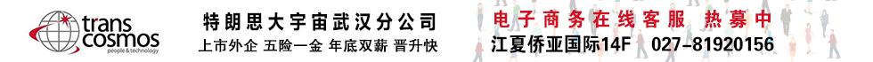 上海特朗思大宇宙信息技术服务有限公司武汉分公司