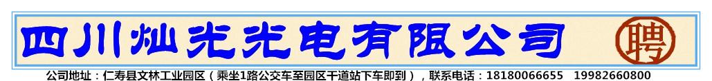 四川灿光光电有限公司