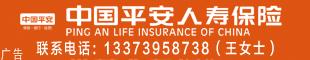 中国平安人寿保险公司