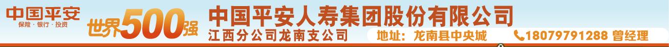 中��平安�C合金融公司��南支公司