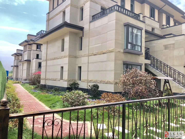 江北新区金牛湖风景区别墅,地铁口法式别墅等房率高。