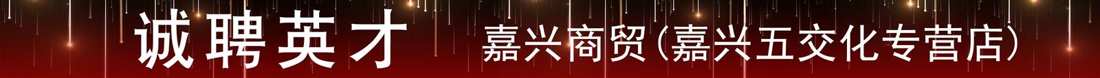 嘉兴商贸 (嘉兴五交化专营店)