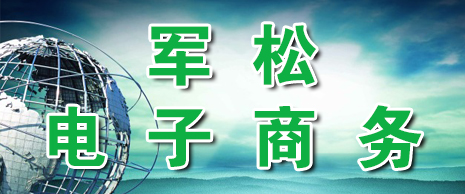 山东军松电子商务有限公司