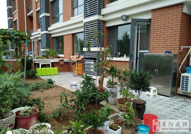 山水华庭稀缺多层花园洋房一楼带花园带小房豪装婚房