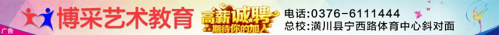 河南省博采艺术文化传播有限公司