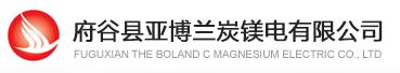 府谷县亚博兰炭镁电有限公司