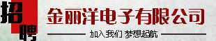 南皮县金丽洋电子有限公司