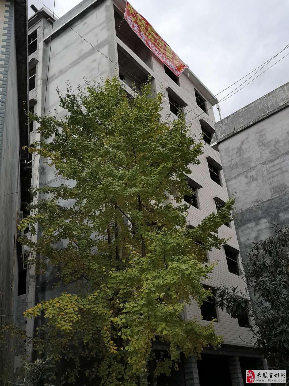 黔龙国际家居建材城3室2厅2卫