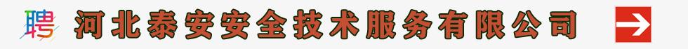 河北泰安安全技术服务有限公司