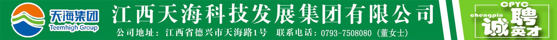 江西天海科技发展集团有限公司