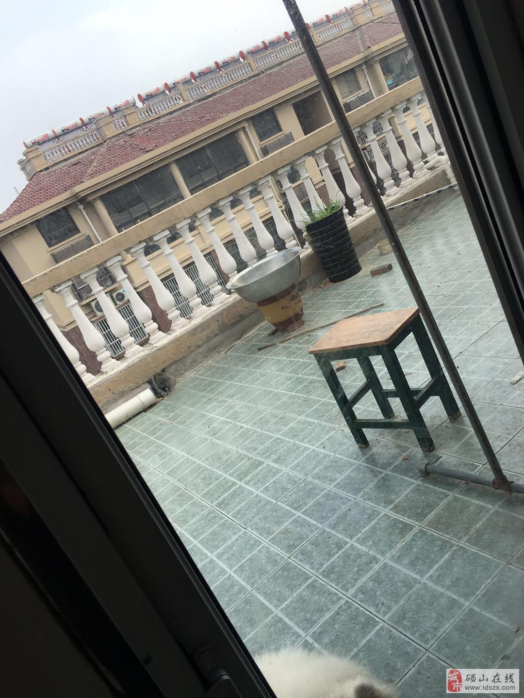 上海花苑5楼复式精装家具家电齐全赠送大平台