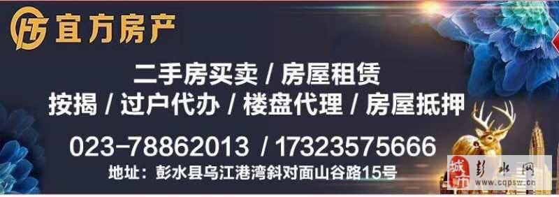 急售精装香江豪园4室2厅2卫64万元
