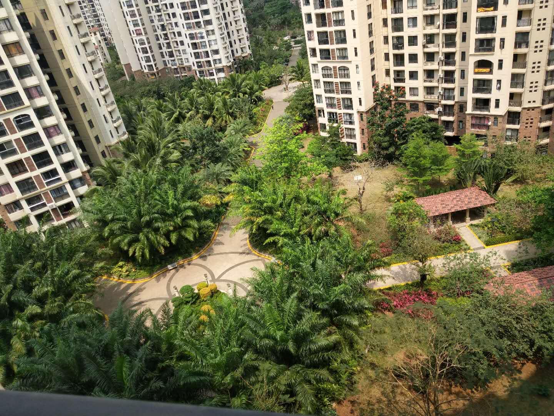 市区最大小区!高绿化率!南北通透2房!高性价比