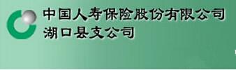 中国人寿保险股份公司湖口支公司