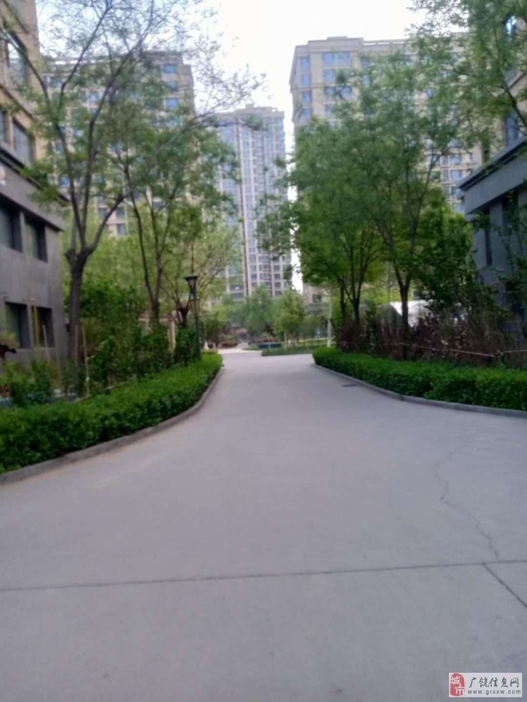 金岭壹品3楼165平4室113万元储藏室共11层