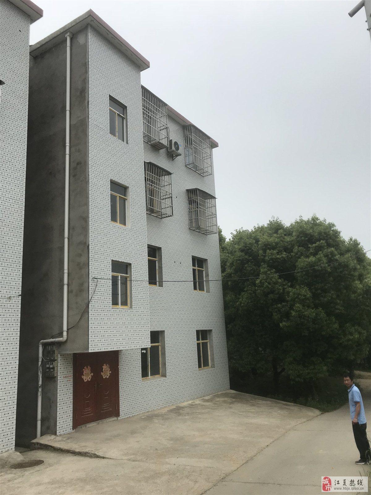 郑店3303工厂中百超市附近私房3室2厅1卫48万元