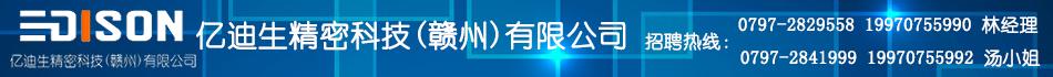 亿迪生精密科技(赣州)有限公司