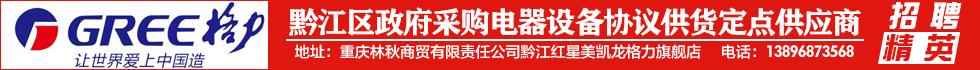 重庆林秋商贸有限责任公司正阳分公司