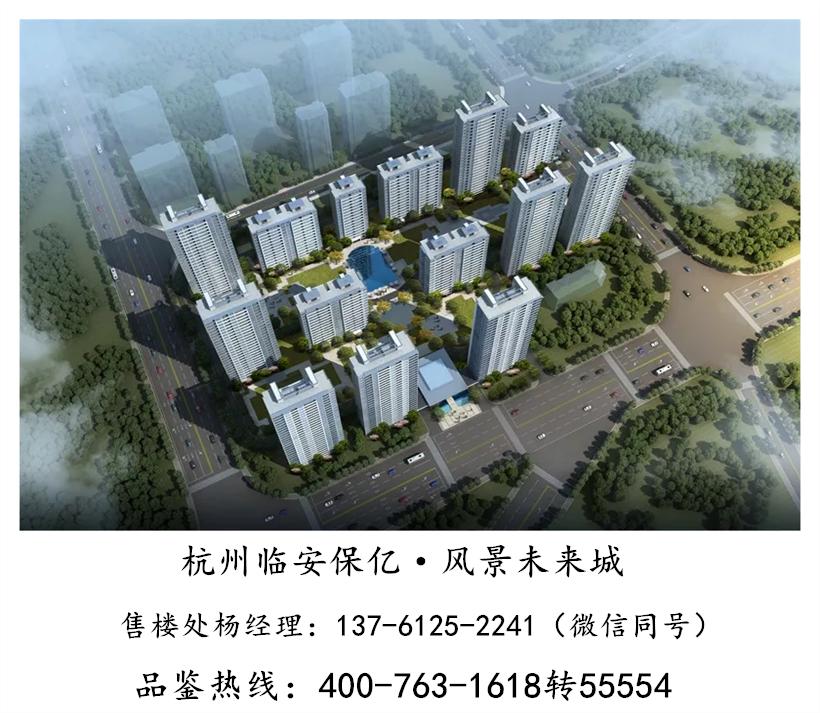杭州临安『保亿风景未来城』——『2019震惊消息!
