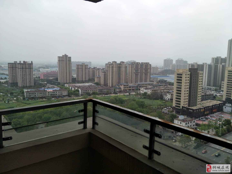 龙腾首府,全新毛坯房房型正,双阳台采光好,南北通