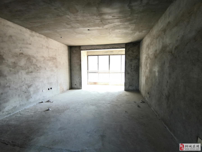 金星中央城黄金地段三室二厅毛坯房全民户型