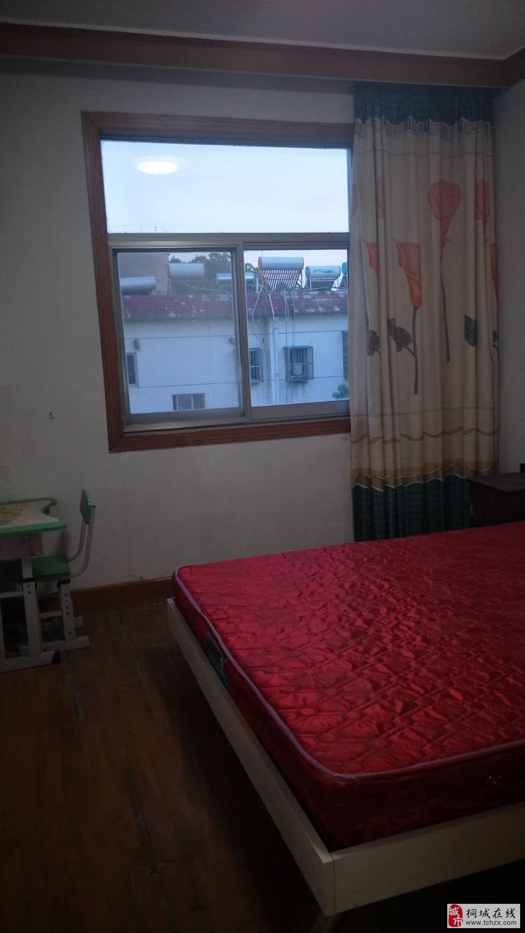 桐中隔壁,市医院宿舍楼,环境优美,住家宁静