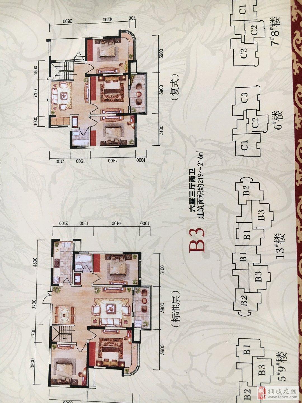 空中别墅龙腾锦绣城220平米电梯复式102万元