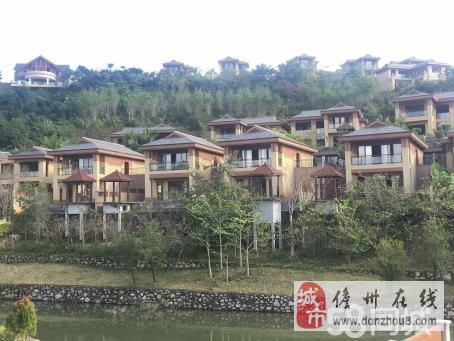 儋州市凤凰谷天然氡温泉入户29万起小户型房源有限