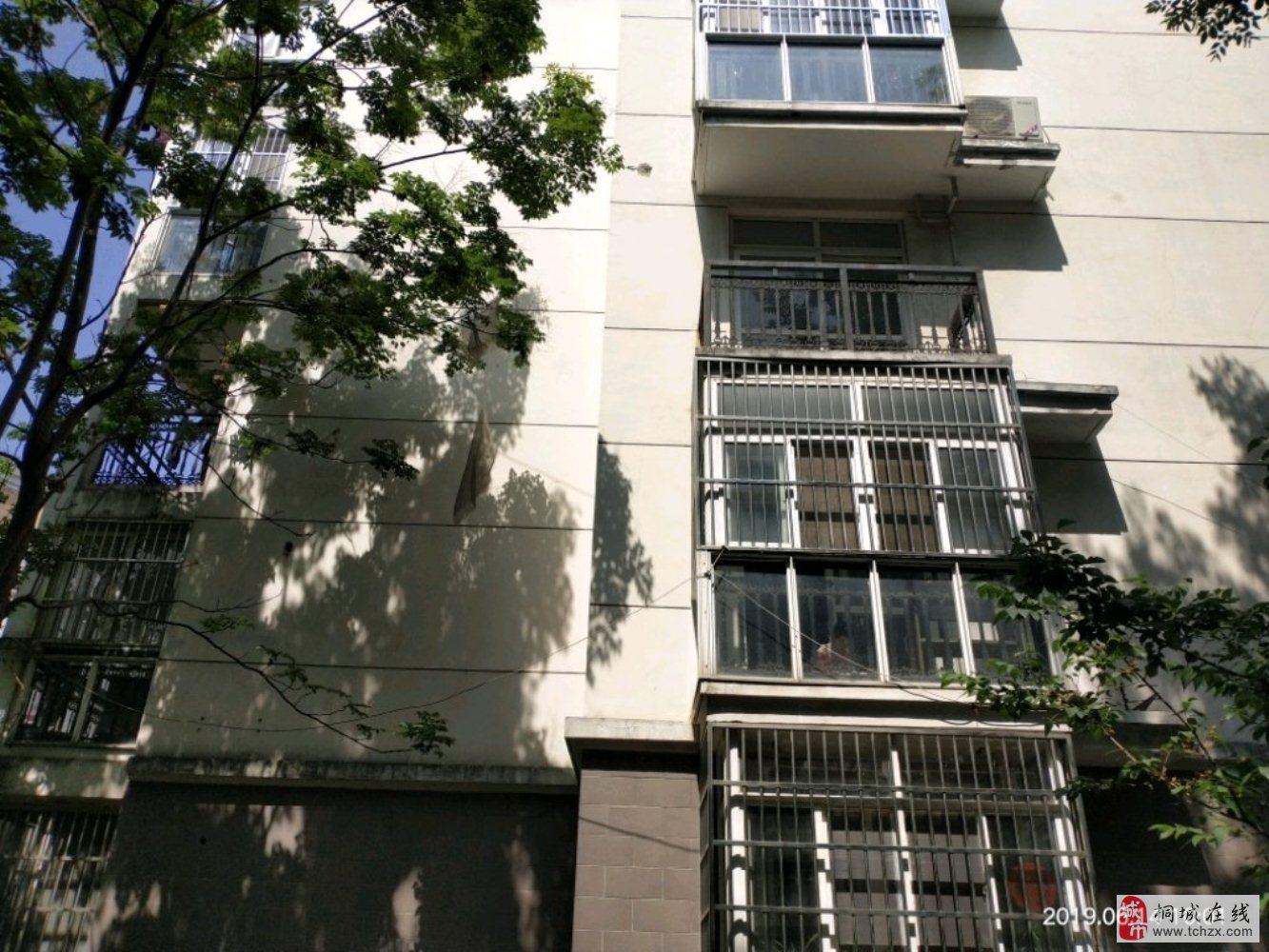 桐乐家园3室2厅1卫50万元