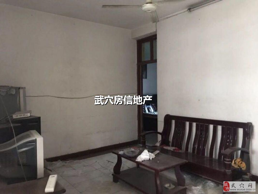 编号260附小附近元件厂公寓80㎡37万元