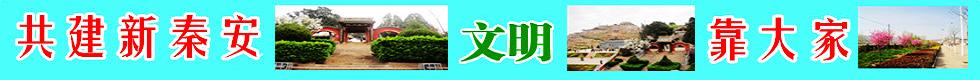 秦安网址导航-秦安人自己上网主页