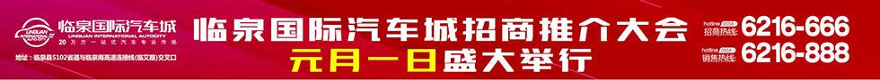 临泉国际汽车城
