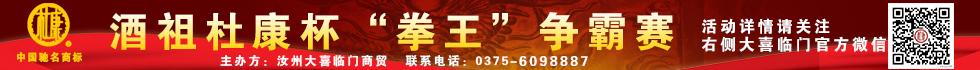 酒祖杜康拳王争霸赛