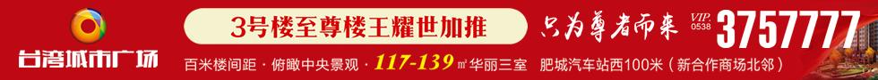 肥城台湾城市广场