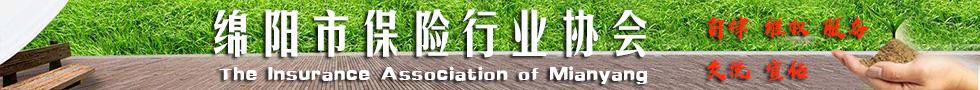 绵阳市保险行业协会