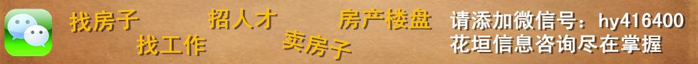 花垣分类信息