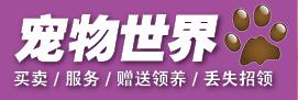郑州港区宠物买卖信息