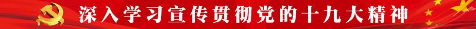 喜迎19大 共铸中国梦