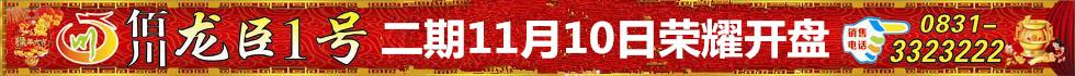 佰川・龙臣1号