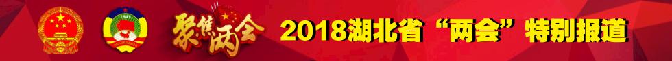 """2018湖北省""""两会"""""""