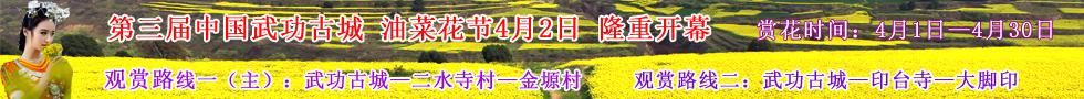 第三届中国武功古城油菜花节4月1日隆重开幕