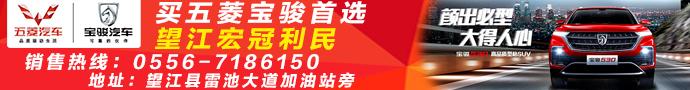 望江县宏冠利民汽车销售公司