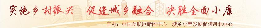 中国网城乡中国