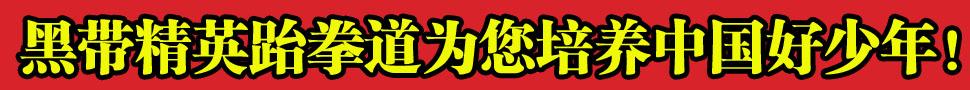 http://p9.pccoo.cn/vote/20170115/2017011522113978103404_970_90.jpg