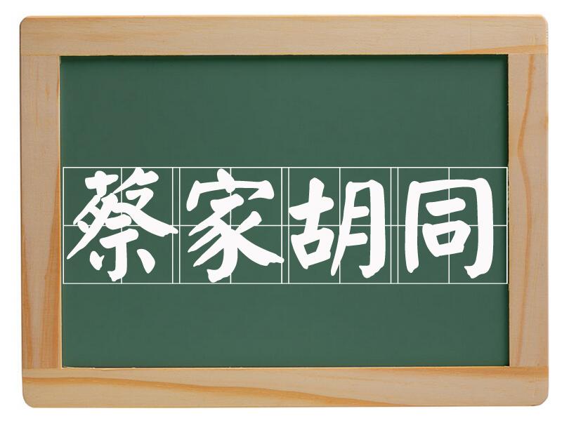 新华办事处蔡家胡同村