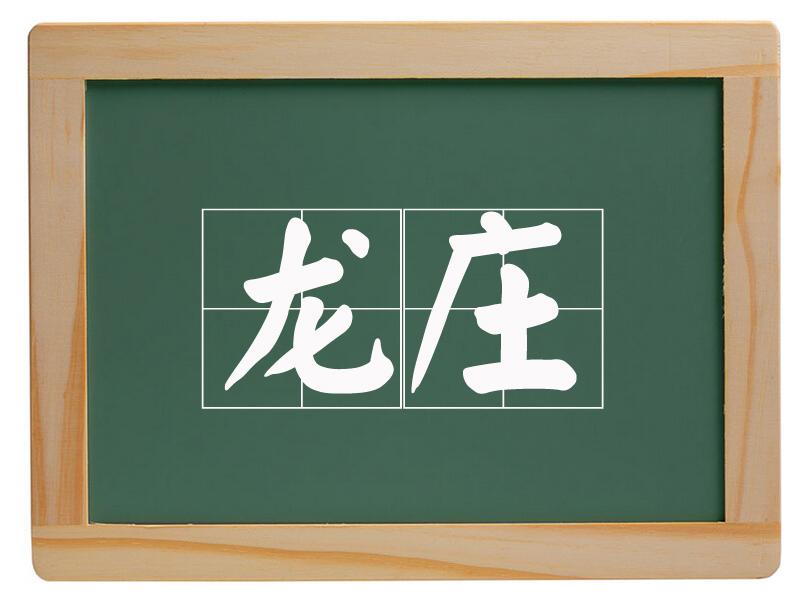 新华办事处龙庄村
